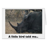 White Rhino gets Advice from a Little Bird, A l... Greeting Card