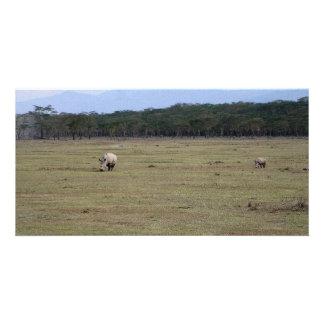White Rhinos Customized Photo Card