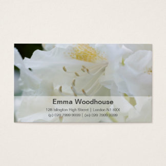 White Rhododendron   Weisse Rhododendron Business Card