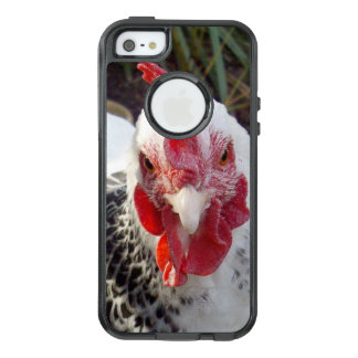 White Rooster With Black Speckles, OtterBox iPhone 5/5s/SE Case