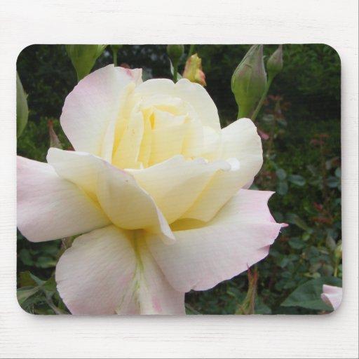 White Rose 001 Mousepad