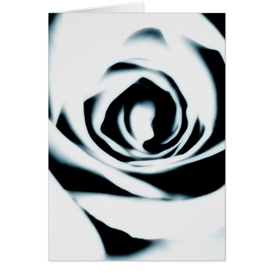 White Rose Card