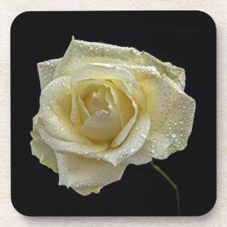 White Rose coasters