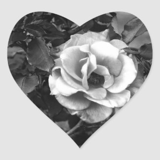 White Rose Collection Heart Sticker