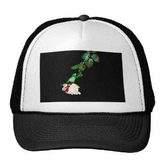 White rose covered with blood mesh hat