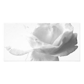White Rose Design Photo Greeting Card