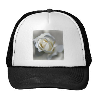 White Rose Garden Flower Beautiful Mesh Hat
