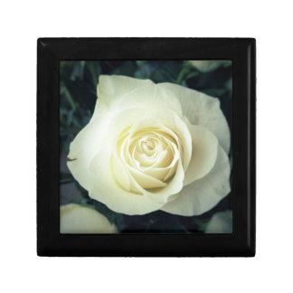 White Rose Mug Gift Box