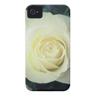 White Rose Mug iPhone 4 Case