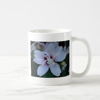 White Rose of Sharon Coffee Mug