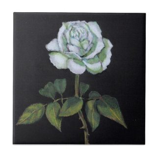 White Rose on Black Background: Color Pencil Small Square Tile