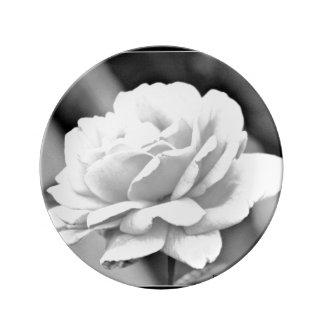 White Rose on Black Porcelain Plate