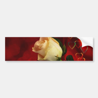 White rose on red background bumper sticker