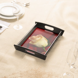 White rose on red background serving platter