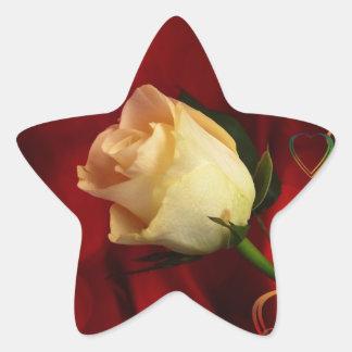 White rose on red background star sticker
