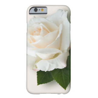 White Rose 'Pascali' Barely There iPhone 6 Case