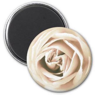 White rose print fridge magnet