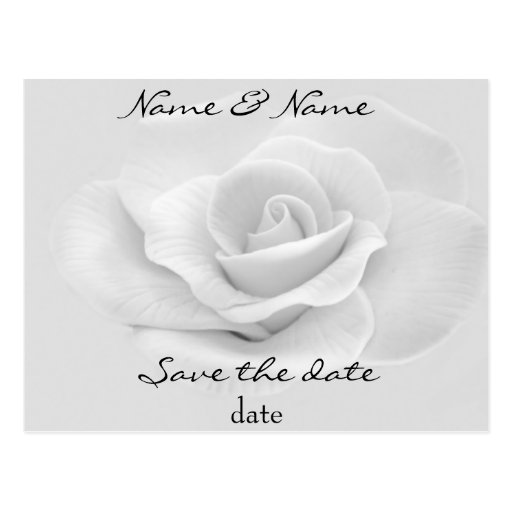 white rose save the date postcard