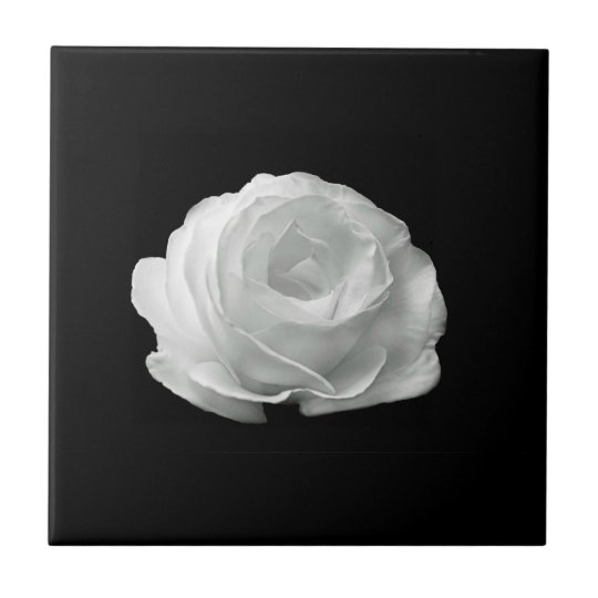 White Rose Tile