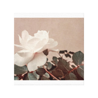White Rose Vintage Style Photo in Ocher Colors. Canvas Prints