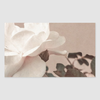 White Rose Vintage Style Photo in Ocher Colors. Rectangular Sticker