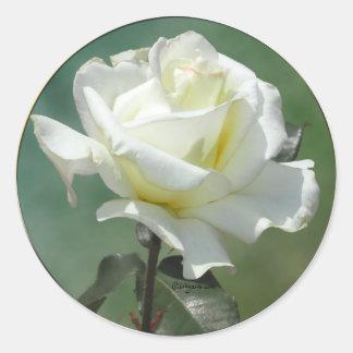 White Rose Wedding Envelope Seal Stickers Sticker