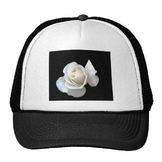 White Rose Wedding Stationery Hats