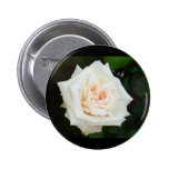 White Rose With Natural Garden Background Badge
