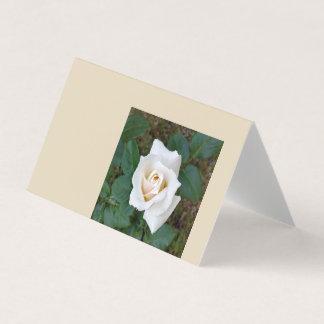 white rosebud card