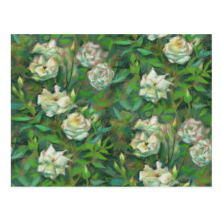 """""""White roses, green leaves"""", beautiful flowers Postcard"""