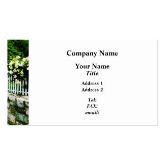 White Roses on Picket Fence Pack Of Standard Business Cards