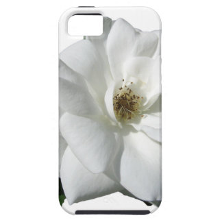 White Roses Party Shower Wedding Blossoms Destiny iPhone 5 Case