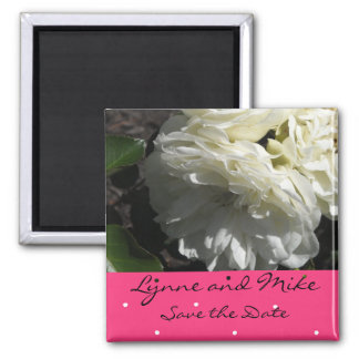White Roses Save the Date Square Magnet