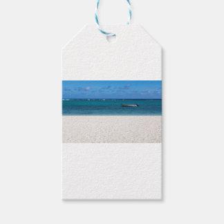 White sand beach of Flic en Flac Mauritius overloo