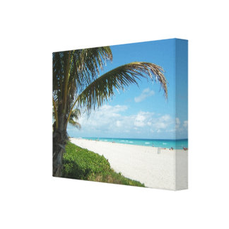 White Sand Beach w Palm Gallery Wrapped Canvas