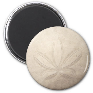 White Sand Dollar Magnet