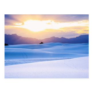White Sands National Monument 3 Postcard