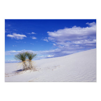 White Sands NM New Mexico USA Print