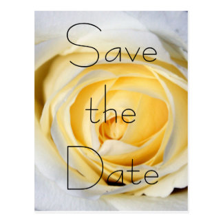 White Save the Date Post Card
