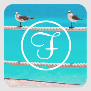 White seagull beach birds photo custom monogram square sticker