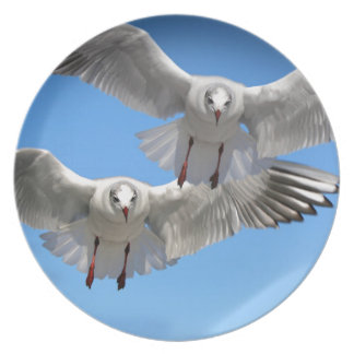 White Seagulls In Flight Plate