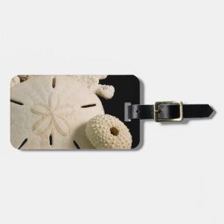 White Seashells And Sand Dollar Luggage Tag