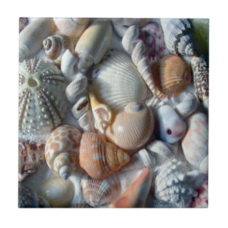 White Seashells Square Tile