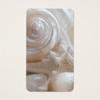 White Seashells Starfish Tropical Beach Sea Shells