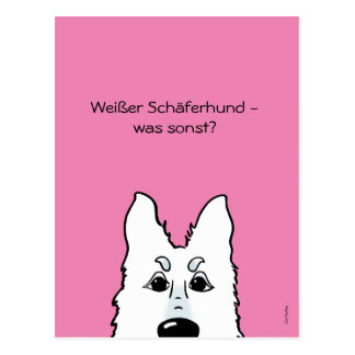 White shepherd dog - which otherwise? postcard