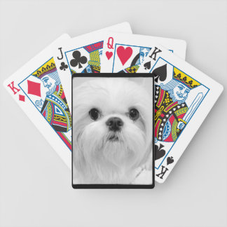 White Shih Tzu Playing Cards