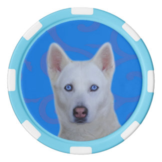 White Siberian Husky Clay Poker Chips, Blue Stripe Poker Chips