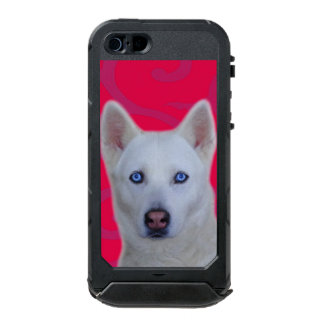 White Siberian Husky iPhone SE/5/5s ATLAS ID™ Incipio ATLAS ID™ iPhone 5 Case