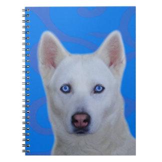 White Siberian Husky Notebook
