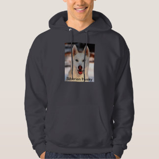 White Siberian Husky on hoodie sweatshirt